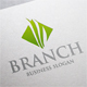 Branch Logo - GraphicRiver Item for Sale