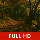 Through the Forest - VideoHive Item for Sale