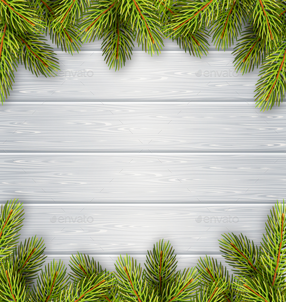 Pine Branches Frame on White Wooden Background - Flowers & Plants Nature