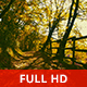 Walking by a Fence in the Woods - VideoHive Item for Sale