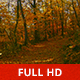 Path in the Woods - VideoHive Item for Sale