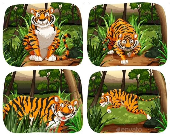 Tiger in Jungle - Animals Characters