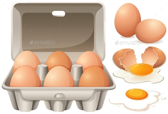 Raw Chicken Eggs and Yolk - Food Objects