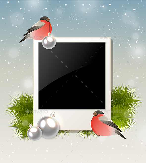 Bullfinch and Photo - Christmas Seasons/Holidays