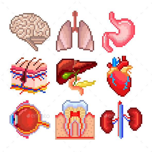 Pixel Human Body Parts Icons Vector Set - Health/Medicine Conceptual