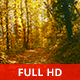 Magical Autumn - VideoHive Item for Sale