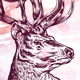 Engraving Deer on watercolor background - GraphicRiver Item for Sale