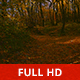 Going into the Woods - VideoHive Item for Sale