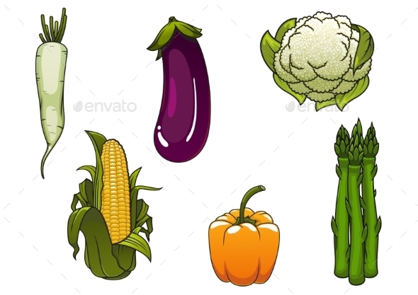 Fresh Healthy Isolated Farm Vegetables - Food Objects