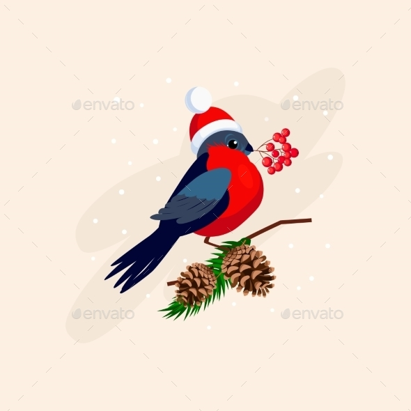 Bullfinch Wearing a Hat On Branch With Cones - New Year Seasons/Holidays