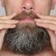 White Man Taking Care Of His Lush Beard  - VideoHive Item for Sale