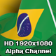 Flag Transition - Brazil - VideoHive Item for Sale