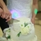 Hand Cut The Wedding Cake Brides - VideoHive Item for Sale