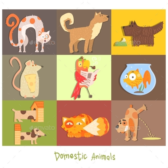 Pets, Cats, Dogs And Their Actions, Emotions - Animals Characters