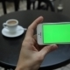 Green Screen In White Phone Infographics - VideoHive Item for Sale