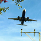 Commercial Airliner Approaching Landing - VideoHive Item for Sale
