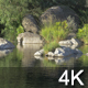 Peaceful Lake - VideoHive Item for Sale