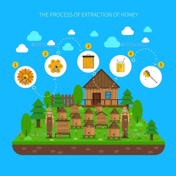 Process Of Honey Extraction Concept  - Food Objects