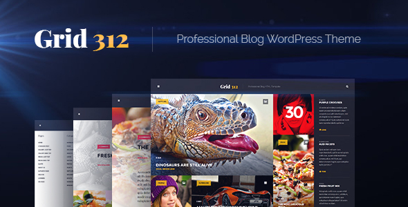 Grid312 - Professional Blog WordPress Theme