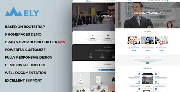 Mely – Responsive Business Drupal Theme