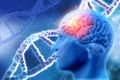 3D medical background with brain and DNA strands - PhotoDune Item for Sale