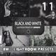 11 Vintage Black And White Lightroom Presets - GraphicRiver Item for Sale