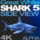 Shark 5 Side View - VideoHive Item for Sale
