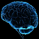 Neuro Bass Transition
