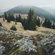 Mountain landscape with fog and pine trees - PhotoDune Item for Sale