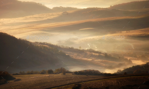 Meadow in autumn in the morning with fog - Stock Photo - Images