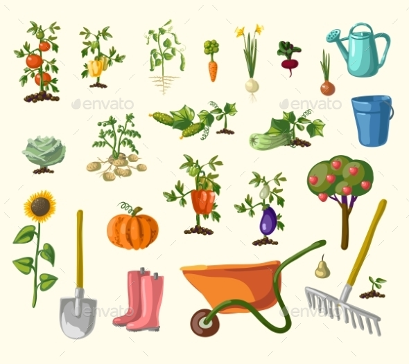 Vector Gardening Set - Flowers & Plants Nature