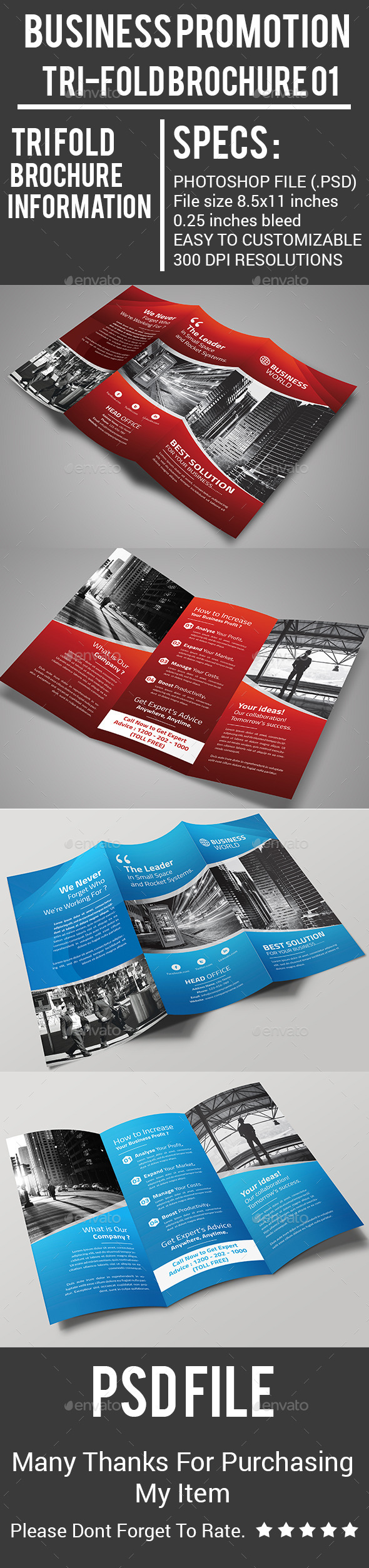 Business Promotion  Tri-Fold Brochure 01 - Corporate Brochures