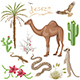 Desert Plants and Animals Set - GraphicRiver Item for Sale