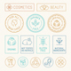 Natural Cosmetics Badges - GraphicRiver Item for Sale