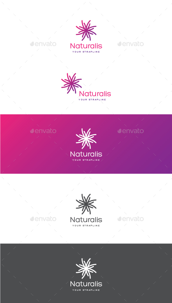 Naturalis Logo - Vector Abstract