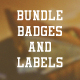 Bundle Badges and Labels - GraphicRiver Item for Sale