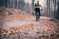 Mountain biker on cycle trail in woods - PhotoDune Item for Sale