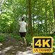 Young Man Running Through Trees In Forest - VideoHive Item for Sale