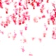 Valentines Backgrounds Pack - VideoHive Item for Sale
