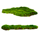 Green moss - GraphicRiver Item for Sale