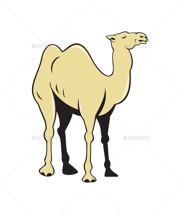 Camel Side View Cartoon - Animals Characters