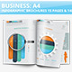 Business Infographics 15 Pages Design
