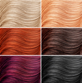 Different hair colors - PhotoDune Item for Sale