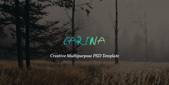 Carina – Creative Multipurpose PSD Template