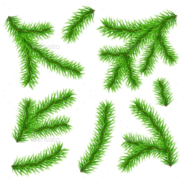 Christmas Tree Branches - Christmas Seasons/Holidays