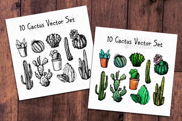 10 Hand Drawn Cactuses - Flowers & Plants Nature
