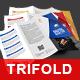 Multipurpose Tri-fold Brochure - GraphicRiver Item for Sale