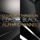 Corporate Transition Classic Black 4 Pack - VideoHive Item for Sale