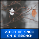 Pinch of Snow on a Branch - VideoHive Item for Sale