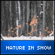 Nature in Snow - VideoHive Item for Sale